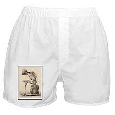 Vintage Anatomy Boxer Shorts