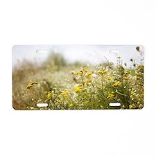 Field flowers Aluminum License Plate