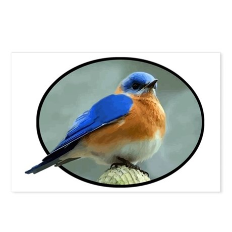 Bluebird in Oval Frame Postcards (Package of 8)