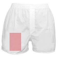 Paw Notebook Back Boxer Shorts