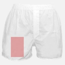Paw Notebook Back Boxer Shorts
