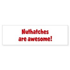 Nuthatches are awesome Bumper Bumper Sticker