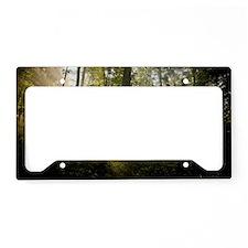 Sunrise in a foggy central eu License Plate Holder