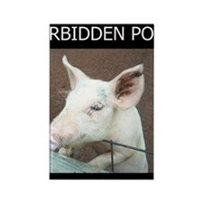 Forbidden Pork Rectangle Magnet
