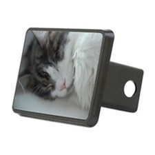 Maine coon cat sleeping Hitch Cover