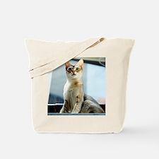 Singapura Cat True Beauty Linus Tote Bag