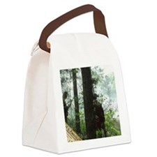 Rebels Awaiting Redcoats Canvas Lunch Bag