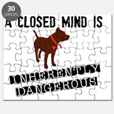 Closed Mind is Inherently Dangerous Puzzle