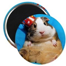 Guinea pig wearing a crown Magnet