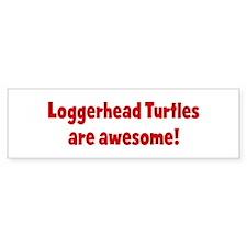 Loggerhead Turtles are awesom Bumper Bumper Sticker