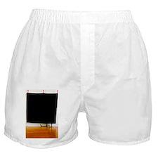 Cat hiding behind cloth Boxer Shorts