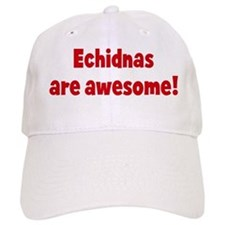 Echidnas are awesome Baseball Cap