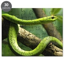 Green Snake Puzzle