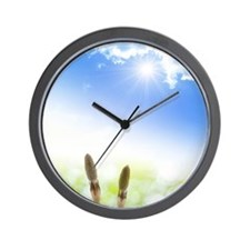 Horsetail and Sky Wall Clock