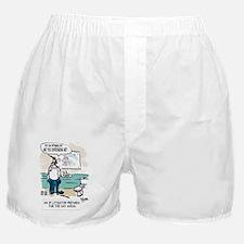 IP Litigator Boxer Shorts