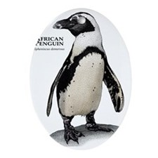 African Penguin Oval Ornament