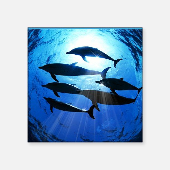 """Porpoises in the Ocean with Square Sticker 3"""" x 3"""""""