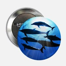 """Porpoises in the Ocean with Sun Rays  2.25"""" Button"""