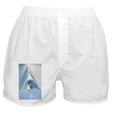 Globe under a book Boxer Shorts