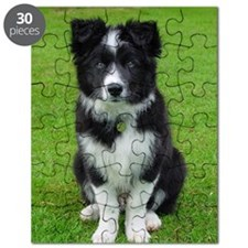 Collie puppy dog Puzzle