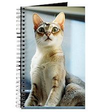 Singapura True Beauty Linus Journal