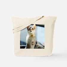 Singapura True Beauty Linus Tote Bag