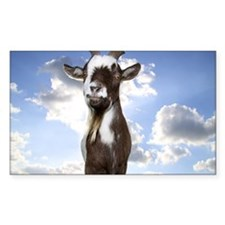 Goat Guru! Decal
