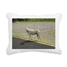 Mexican Dog Rectangular Canvas Pillow