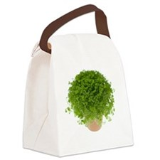 Potted plant Canvas Lunch Bag