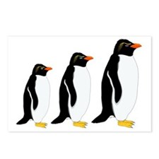 Penguin Parade Postcards (Package of 8)