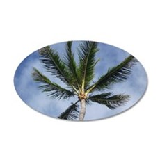 Palm Tree 35x21 Oval Wall Decal