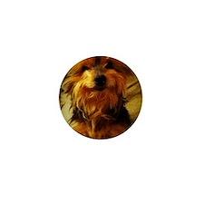 silky dog Mini Button