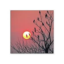 """Sun and birds Square Sticker 3"""" x 3"""""""
