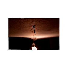 Mosquito 3'x5' Area Rug