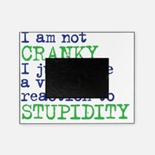 cranky Picture Frame