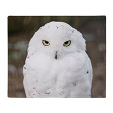 White snow owl staring straight in t Throw Blanket