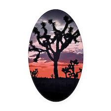 Joshua Tree Oval Car Magnet