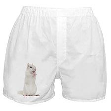 Siberian chipmunk - Eutamias sibiricu Boxer Shorts