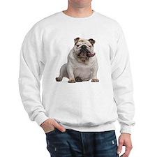 English bulldog (5 years old) sitting Sweatshirt