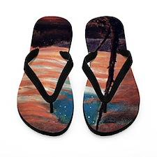 Frederic Edwin Church Flip Flops