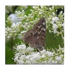 Butterfly - Hackberry Emperor Tile Coaster