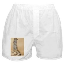 Barbary Ground Squirrel Boxer Shorts