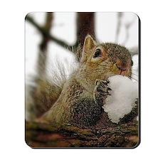 Winter hideaway Mousepad