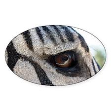 BUP Zebra Eye Decal