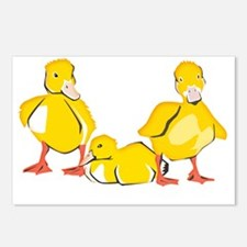 Trio of Ducklings Postcards (Package of 8)