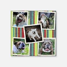 "dog collage_edited-1 Square Sticker 3"" x 3"""