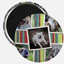dog collage_edited-1 Magnet