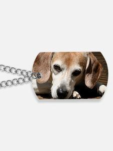 Hurry Home, I miss you Dog Tags
