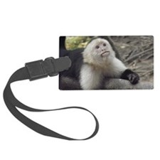 Capuchin Monkey Luggage Tag
