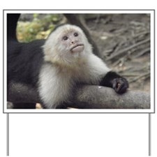 Capuchin Monkey Yard Sign